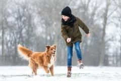 Isabel van Veen Fotografie-Shoots-Hondenshoot-hondenfotografie-hond-toller-novascotiaducktollingretriever-familie-kind-spelen-liefde-sneeuw-winter (12)