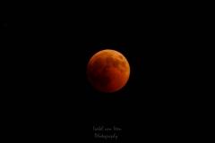 IsabelvanVeen-Portfolio-Natuur-bloedmaan-maansverduistering-maan (52)